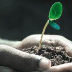 Leadership growth through 360° feedback