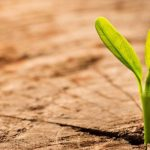 Embedding positive changes in your company